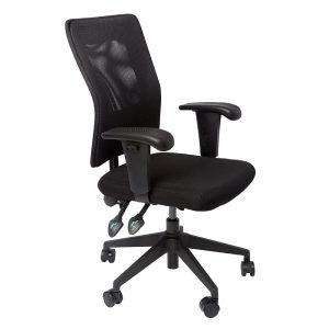 Corang High Back Ergonomic Office Chair
