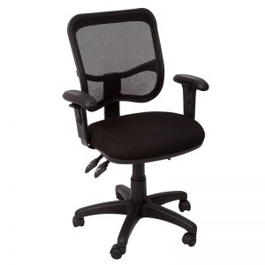 Surrey Chair with Arms Image 2