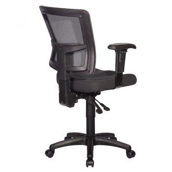 Venice Chair Rear View