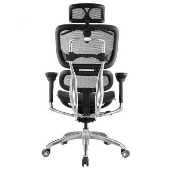 Hi-Tech Ergo Chair, Rear View