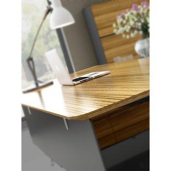 Carine Desk, Edge Detail