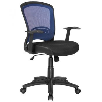 Andes Chair, Blue Mesh Back
