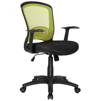 Andes Chair, Green Mesh Back