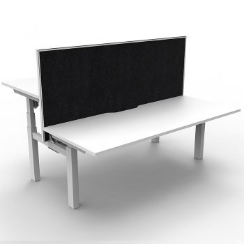 White back to back electric sit stand desks, with divider