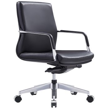 style ergonomics select-l cahir